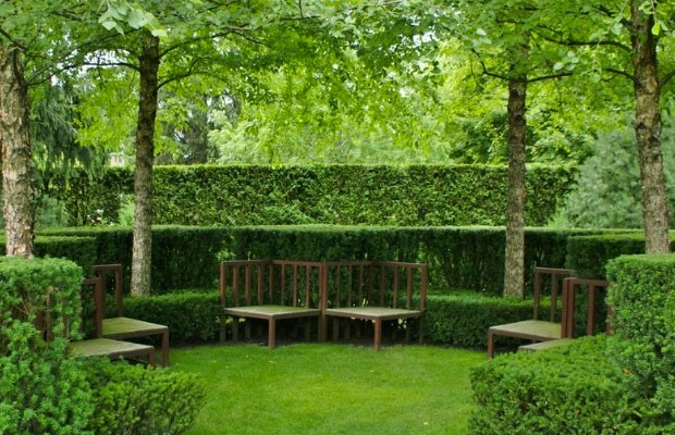 hedge-cutting-designs-15