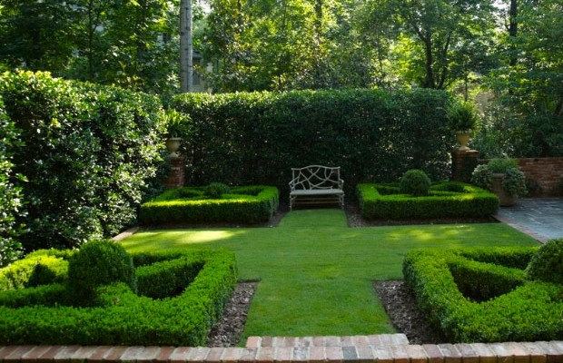 hedge-cutting-designs-7-1